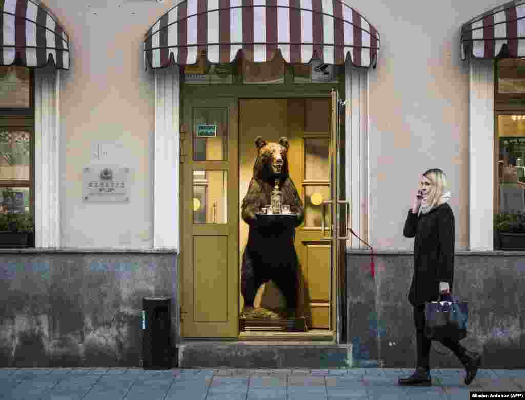 A woman walks by a business in Moscow featuring a stuffed bear in its entrance offering vodka. (AFP/Mladen Antonov)