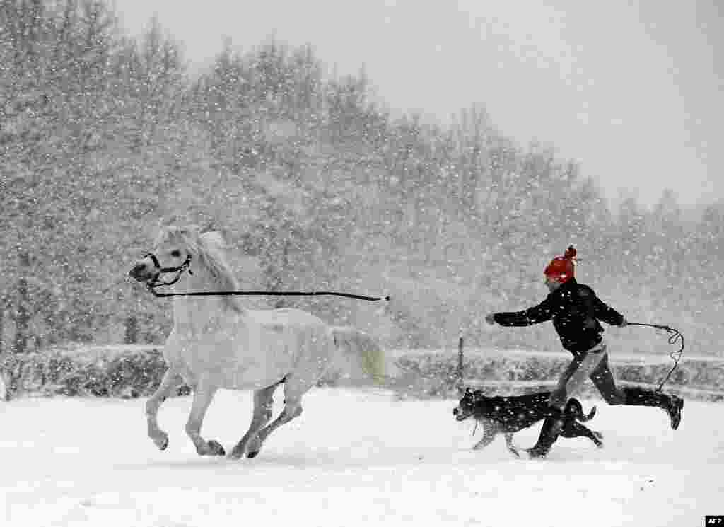 A young girl is pictured with her dog and a pony as it snows near Warsaw, Poland. (AFP/Janek Skarzynski)