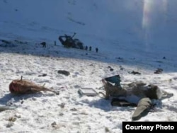 Two poached argali sheep were found at the site of the helicopter crash in the Altai region in January 2009.