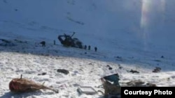 Two slain argali sheep at the site of a fatal helicopter crash in Altai in January