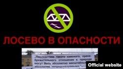 """Члены инициативной группы """"Лосево в опасности"""" надеются отстоять свой лес"""