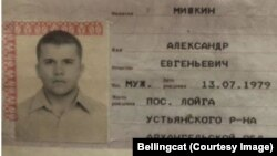 Паспорт Александра Мишкина