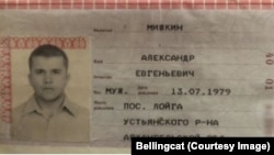 Pasoš Aleksandra Miškina