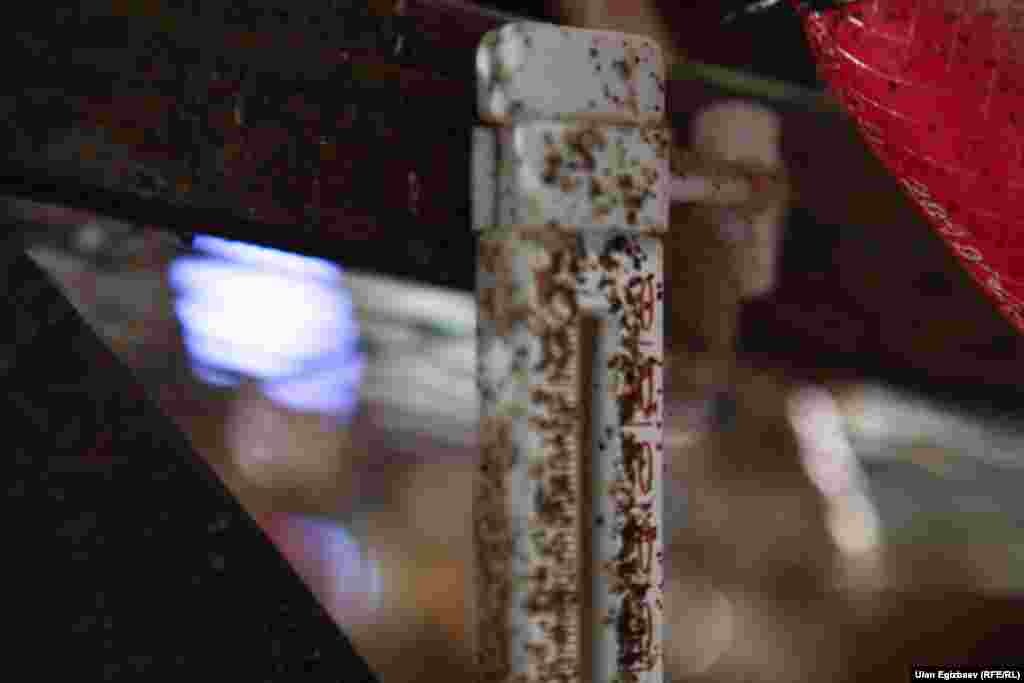Шейвер тоогу жылуулукту сүйөт. Кышкысын ферманын температурасы 22-23 градус жылуу болушу шарт.