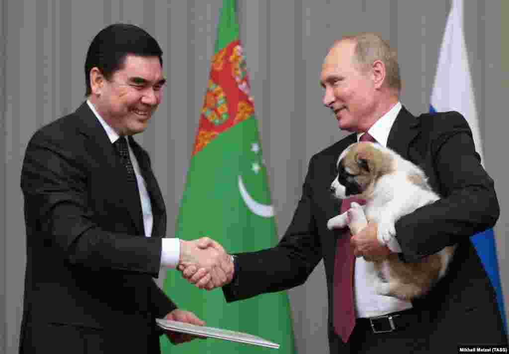 Владимир Путин увидев, что Верному не очень комфортно подхватил его из рук своего туркменского коллеги Гурбангулы Бердымухамедова.