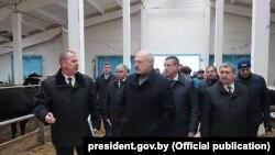 Аляксандар Лукашэнка наведвае кароўнік малочнага комплексу «Сьліжы» ў Шклоўскім раёне, 26 сакавіка 2019 г.