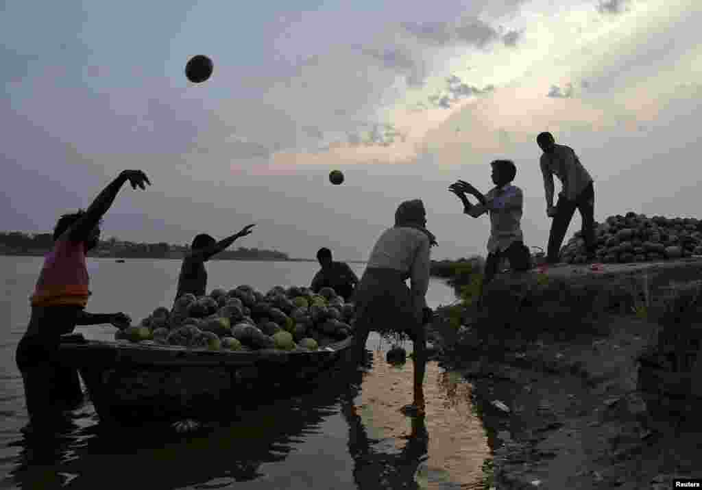 Фермеры разгружают лодку с урожаем тыквы на реке Ганг неподалеку от индийского города Аллахабад в Индии
