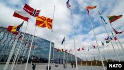 Demirgazyk Makedoniýanyň NATO goşulmagy mynasybetli baýdak götermek dabarasy geçirilýär. Brýussel, 30-njy mart, 2020-nji ýyl