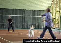 Дмитрий Медведев уже был преемником Владимира Путина