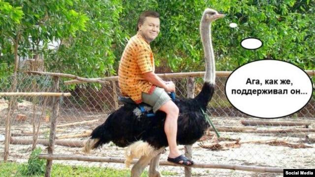 """Минфин Чехии заморозил прибыль конюшни Кадырова: глава Чечни заявил о """"грубейшем нарушении прав лошадей"""" - Цензор.НЕТ 8475"""