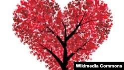 Италия - Рӯзи Валентин ё рӯзи ошиқон, ки дар саросари олам таҷлил мешавад.