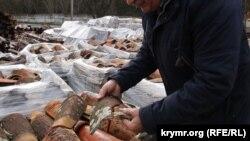 Бекир Дудаков демонстрирует разбитую строителями черепицу Ханской мечети