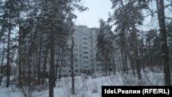 """Тольяттинскому лесу угрожает """"трасса преткновения"""""""