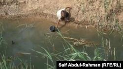 مصدر الماء الوحيد في كنجيجة