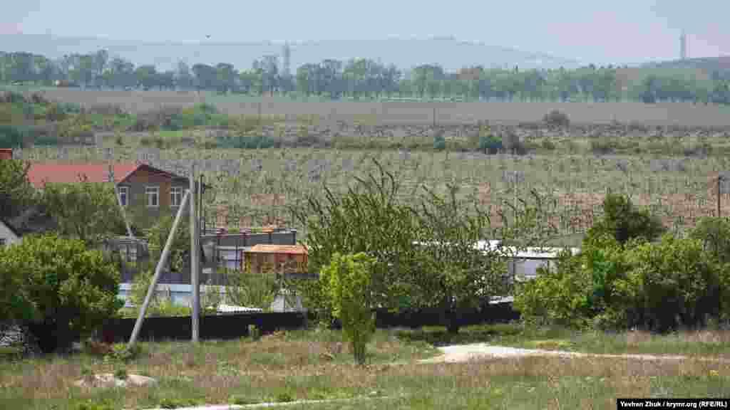 Вокруг села раскинулись виноградники агропредприятия «Золотая Балка»