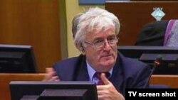 Optuženik za genocid Radovan Kardžić za vrijeme statusne konferencije o njegovom suđenju 3. rujna 2010. godine.