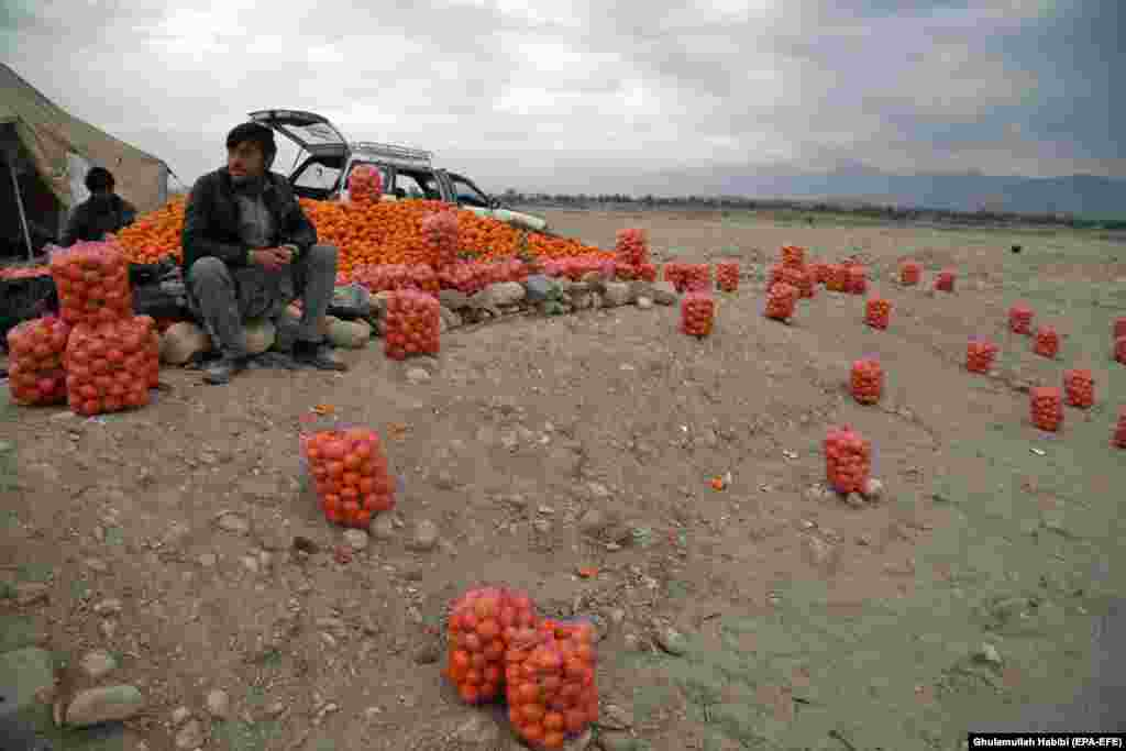 Afghan men sell oranges on the outskirts of Jalalabad. (epa-EFE/Ghulamullah Habibi)