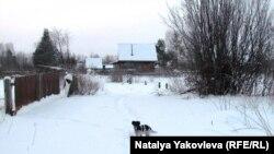 Тарский район Омской области. Дом Елены Кириченко