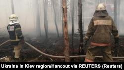 До гасіння залучили більше ніж тисячу пожежників і майже 300 одиниць техніки