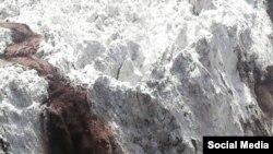 """Пораи """"Гӯри кампир"""" дар акси Мустаони Ваҳҳоб. 11 июли соли 2017"""