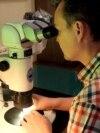 Сибирский умелец создает самые маленькие в мире шедевры