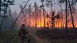 Волонтер, задействованный в тушении лесного пожара в Якутии. 17 июля 2021 года