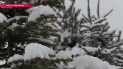 Страны Центральной Азии завалило снегом