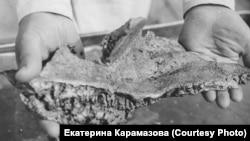 Золотые самородки из Билибинского района