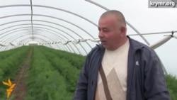 Аграрии Крыма терпят убытки