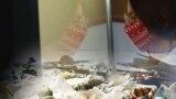 Bakterije koje jedu plastiku rješenje za ekološke probleme