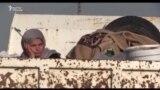 Сегиз жылга аяк баскан Сирия согушу