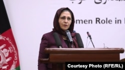 کریمه حامد فاریابی، وزیر اقتصاد افغانستان