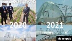 Chortoqning Baland adirida 13 milliard so'mga qurilgan issiqxonalar. 2020 - yil 26 - iyun - 2021 -yil 3 - iyun