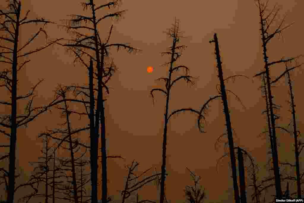 Солнечный свет закрывается дымом горящих лесов в Сибири, Республика Саха, 27 июля