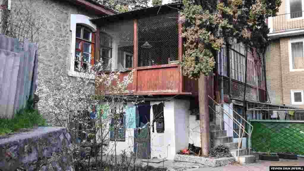 Старий кипарис росте прямо біля сходів, поруч мирно дрімає собака