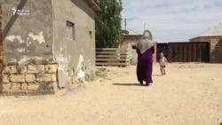 «Теріс ағым» айыбы - оралманға азаматтық бермеуге себеп