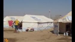 لاجئون في مخيم كوروكوسك