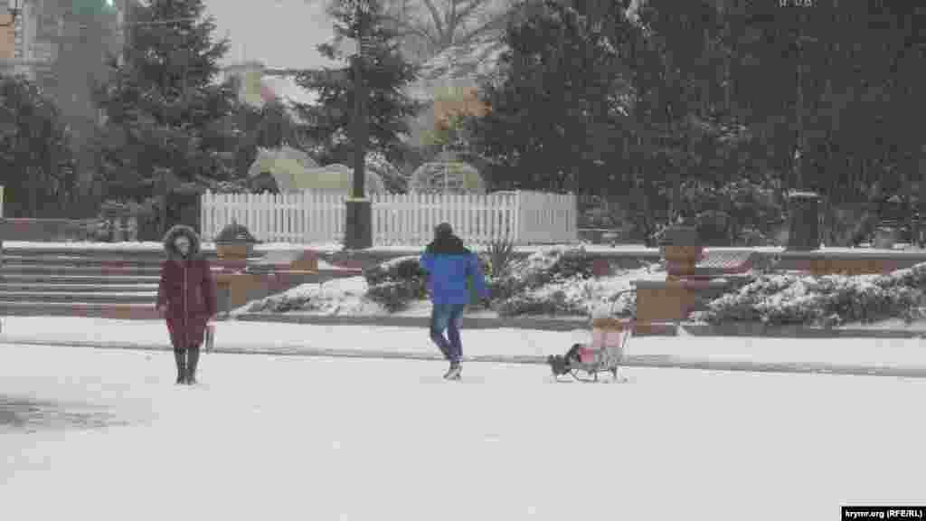 На улице Ленина не часто можно увидеть подобную картину: в Керчи бывают зимы, когда снежного покрова недостаточно для того, чтобы прокатить ребенка на санках