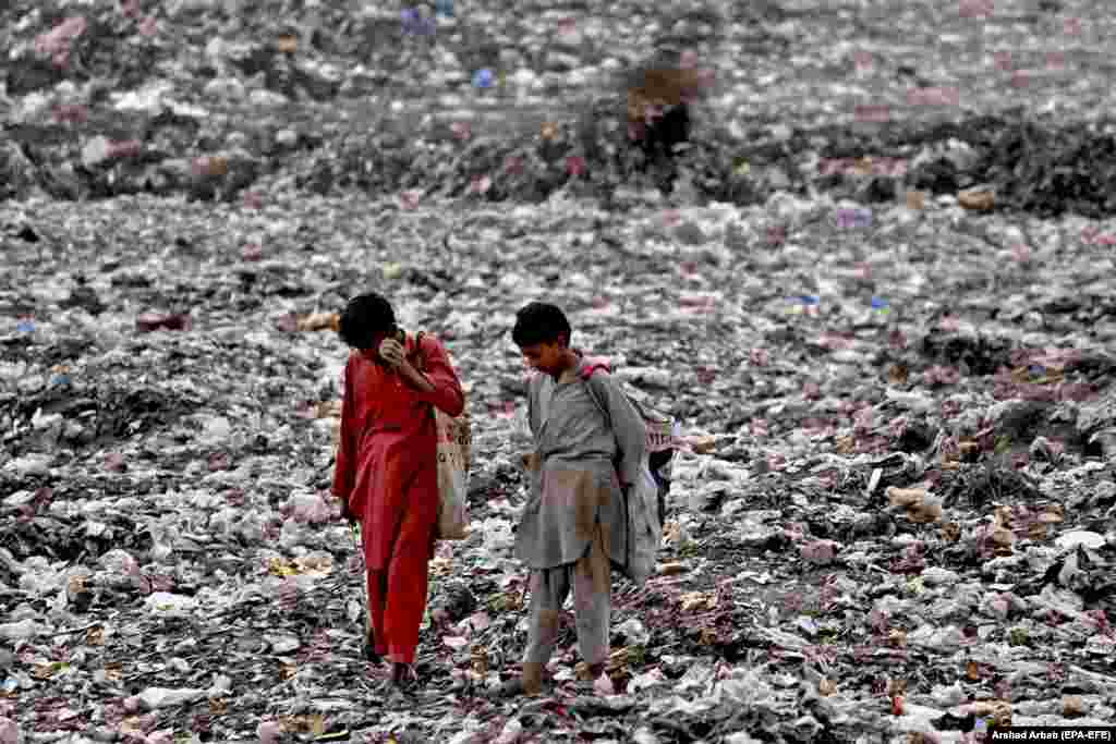 Pakistani boys collect recyclable waste from garbage dumps on a roadside in Peshawar. (epa-EFE/Arshad Arbab)