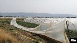 Невреме во Струмица откорна пластеници и предизвика големи штети кај земјоделците. 22 јуни 2021 година.