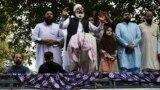 د جماعت اسلامي امیر سراج الحق