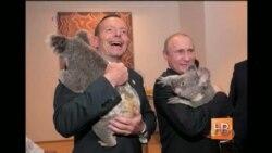 Шаль и коала - встречи с Путиным прошли без улыбок