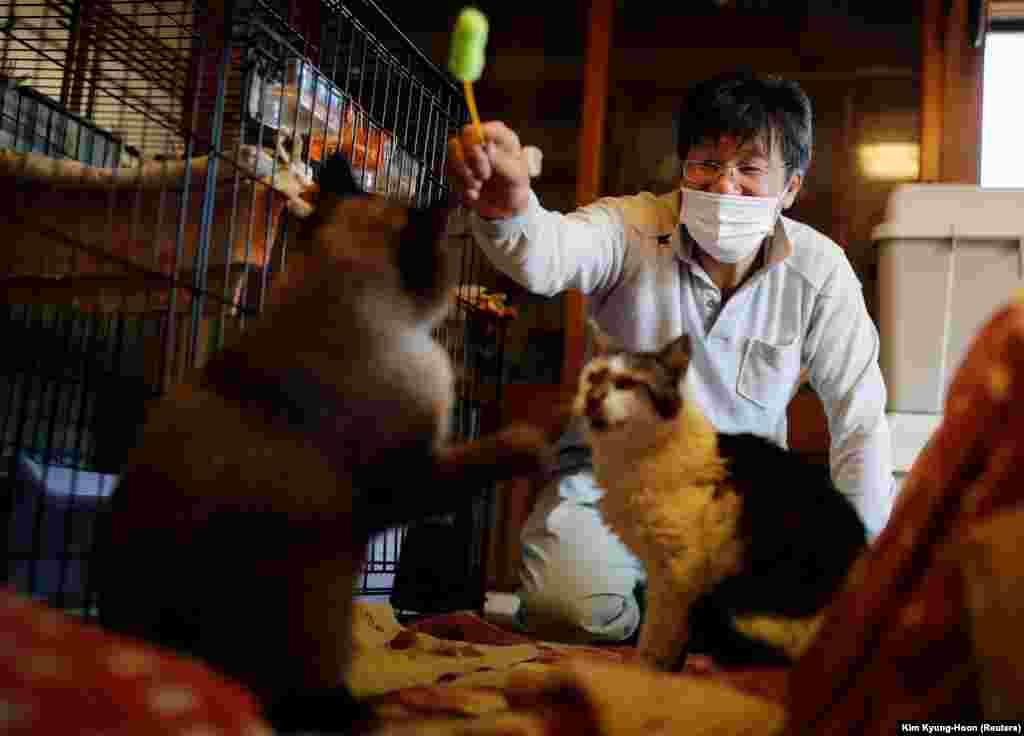 Kato Szakae Mokkun és Varázs nevű macskáival játszik. Mindkét cica beteg - macska-leukémiájuk van.