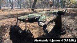 'Pluća Podgorice' poslije požara