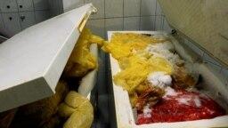 GRAB - Rotting Placentas Overflow From Fridges At Kosovo's Biggest Hospital