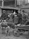 Красноярец Онипко в повозке, запряженной волками. 1909 г.