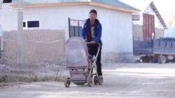 Данисте: Өзбекстандан шыпаа издеген баткендиктер