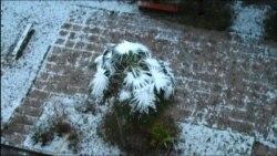 Снег в Сухуми