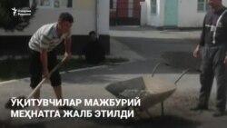 Ферганские учителя пожаловались на принудительный труд