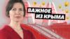 Мост в Крыму не приносит денег | Важное из Крыма (видео)